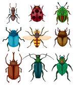Icono de error insectos dibujos animados — Vector de stock