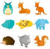 Cartoon zoo animal icons — Stok Vektör