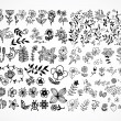 Set of black flower design elements - Stock Vector