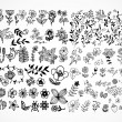 Set of black flower design elements - Stockvectorbeeld