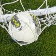 Ball in the net — Stock Photo #8424957