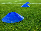 Training cones over a grass — Stock Photo