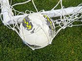 Ball in the net — Stock Photo