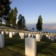 Stock Photo: Unmarked graves