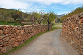 Old stoned-wall road in Spain — Stock Photo
