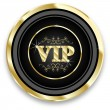 Vip icon — Stock Vector #8082599