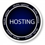 Hosting — Stock Vector #8561147