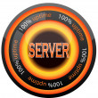 Server icon — Stock Vector #8561339