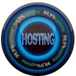 Hosting — Stock Vector #8561351