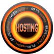 Hosting — Stock Vector #8561361