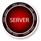 Server icon — Stok Vektör