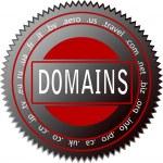 Domain icon — Stock Vector #8665853
