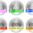 Guarantee labels — Stock Vector #8670208