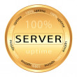 Server icon — Stock Vector #8684551