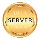 ícone do servidor — Vetorial Stock