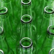 Green Bottles — Stock Photo