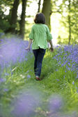 Child and bluebells — Stock Photo