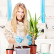 Woman transplant plant in a bigger pot — Stock Photo #9286325
