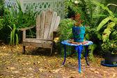 O jardim — Foto Stock