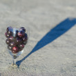 Wine glass with grapes - Stock Photo