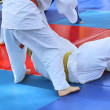 Martial arts - judo - Stock Photo