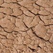 Soil cracks — Stock Photo #9336038