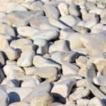 Pebbles — Stock Photo #9803631