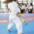 Karate — Stock Photo #9815019