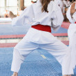 Karate — Stock Photo #9815044