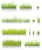 Green Grass Set — Vecteur
