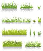 Groen gras set — Stockvector