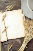 Old book with wheat — Stock Photo
