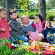 Picnic by the river — Stock Photo #8215180