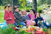 Picnic by the river — Stock Photo