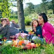 Young family having picnic — Stock Photo