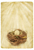 Golden egg in nest — Stock Photo