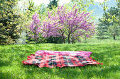Picnic blanket — Stock Photo