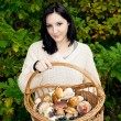 Basket full of mushrooms - Stock Photo