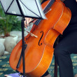 Playing violoncello — Stock Photo