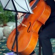 Stock Photo: Playing violoncello