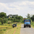 Myanmar country landscape with small truck — Stock Photo