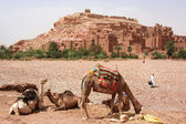 Ait Benhaddou Kasbah, Morocco — Stock Photo