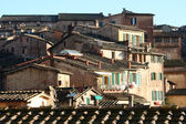 Roofs of Siena, Tuscany — Stock Photo