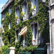 Stock Photo: House with ivy in Mont-Martre, Paris