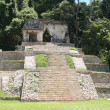 Palenque pyramid, mexico — Stock Photo #9017307