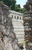 Pirámide de palenque, méxico — Foto de Stock