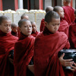 Myanmar novice monks in line — Stock Photo #9110271