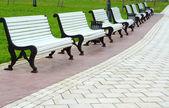 White benches — Stock Photo