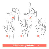 Gestures of human hands — Stock Vector