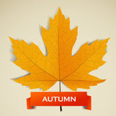 Maple leave with autumn banner — Stock Vector